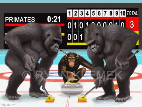 primates playing curling alt-text for image