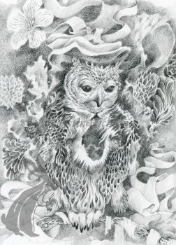 pencil drawing of owl surrounded by ribbon and flowers alt-text for image